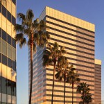 Los Angeles Business Architecture & Palm Trees