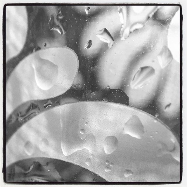 Decorative Glass & Water Drops in B&W