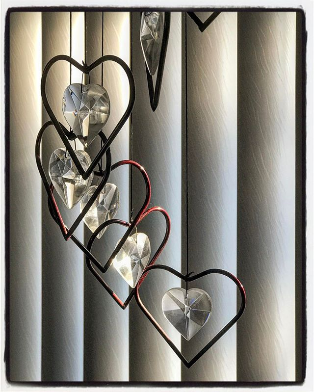 Hearts in Morning Sunlight