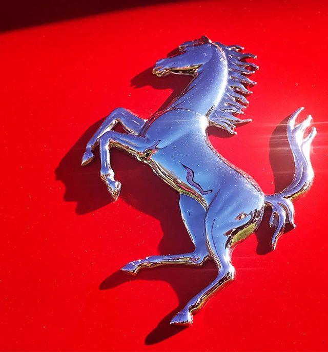 Ferrari Prancing Horse Emblem On Red Reality Seo