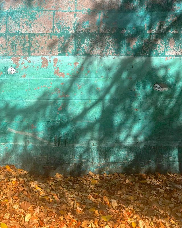 Colors, Shadows & Some Decay